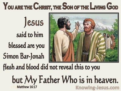 Matthew 16:17 Blessed : Flesh and Blood Did Not Reveal This (brown)